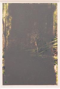 260108 aus der serie grauwald by gerhard richter
