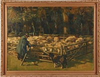 sheep corral by johannes wilhelm van der heide
