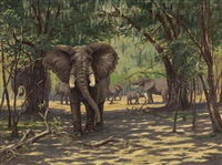 elephants in kenya by arthur radclyffe dugmore