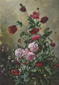 poppies and carnations by a. renaudin