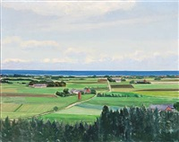 view of green fields and farmhouses by lars swane