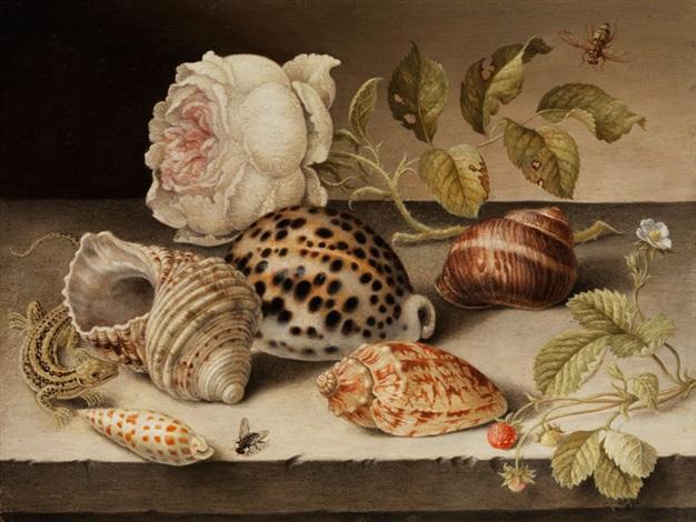 kleines stilleben mit meeresmuscheln und meeresschnecken zwischen rose erdbeeren und eidechse by balthasar van der ast