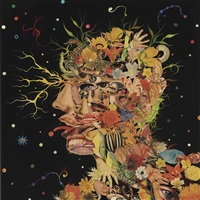 head by fred tomaselli