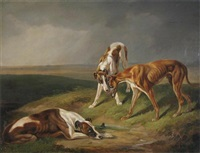 three lurchers in a landscape by william adam