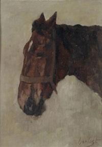 kopf eines pferdes, ruhend by thomas herbst