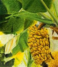 bananenstaude by thomas baumgärtel
