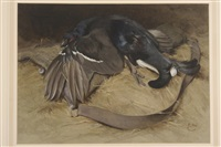 a still life of blackcock laid over a shooting bag by edwin john alexander