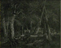 civil war battle scene within a forest by hillen