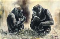 lowland gorillas by paul apps
