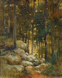 woods behind david lithgow's cottage in the adirondacks by david cunningham lithgow