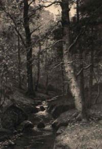 waldbach im herbst by richard johann christian fischer