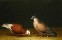 zwei tauben by nicolai peters herm. sohn