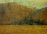 california landscape by johannes reimers