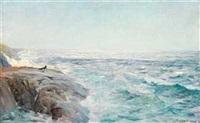 sommerdag ved havet by frederik kolstö