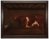 a brown and white bull with a trough of turnips by g. b. newmarch