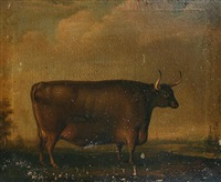 bull in a landscape by thomas weaver