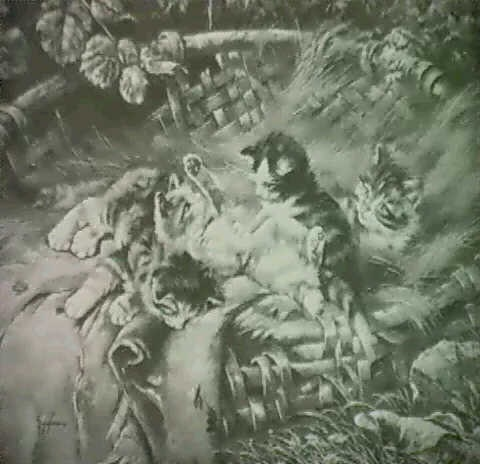 spielende katzchen in weidenkorb by j hofmann