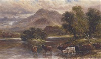 highland cattle watering at a loch by a. lewis