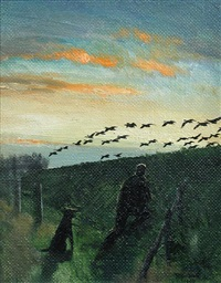 wildfowling by peter markham scott