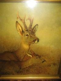 roebucks (study) by william woodhouse