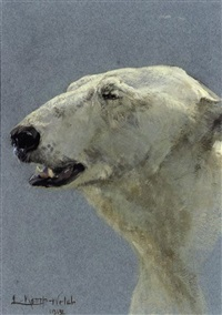 polar bear (study) by lucy elizabeth kemp-welch
