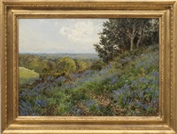 surry bluebells by john clayton adams
