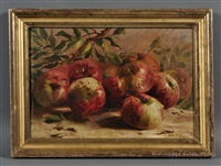 still life with apples by julie hart beers