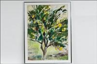 sitruunapuu - citronträd by anita snellman