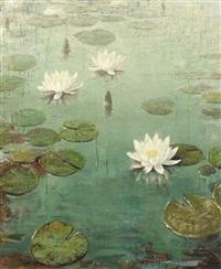 water lilies by vivian milner akers