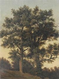 zwei große laubbäume an einem hang by friedrich philip reinhold