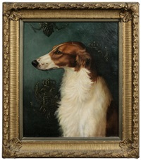russian borzoi by alexander pope