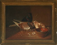 still life with nesting pigeons by nicolai peters herm. sohn