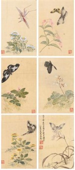 flower and insects (album w/12 works) by ma quan