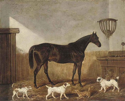 a favourite hunter and terriers in a stable by james of bath loder