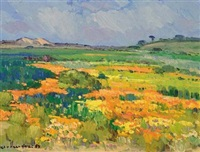 namaqualand in bloom by piet (pieter gerhardus) van heerden