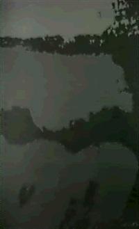 landscape fiat i by sister corita kent