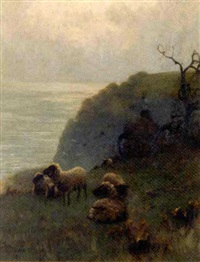 sheep beside a cliff, overlooking the sea by sidney pike