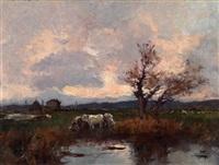 campagna con bovi by alberto cecconi