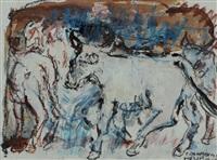 cavalli by maurilio colombini