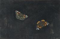 zwei schmetterlinge by giovanna garzoni