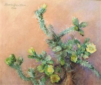 cactus still life by marion boyd allen