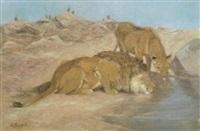 löwenpaar an der tränke by carl appel