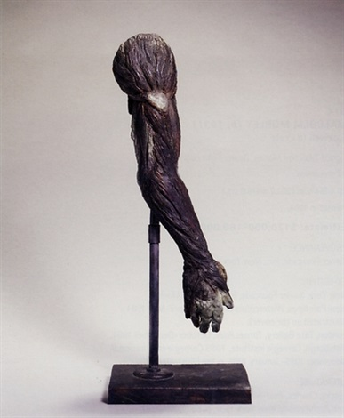 meat arm by kiki smith
