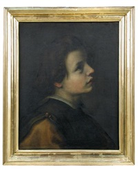 head of a youth in profile looking upwards and to the right by giovanni bilivert