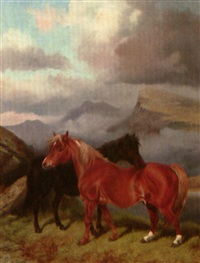 a black and a bay ponu in a mountain landscape by see graeme, colin roe (colin graeme)