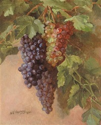 grapevine by henrietta s. quincy