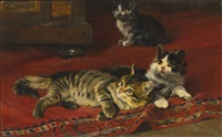 kittens by julius adam the elder
