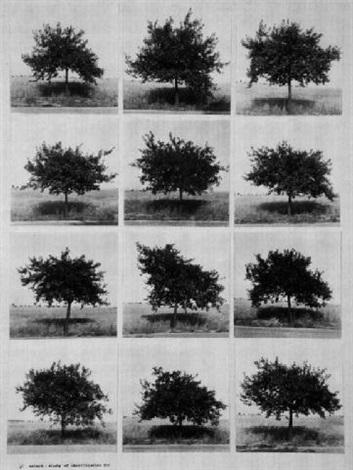 study of identification ii by jiri valoch