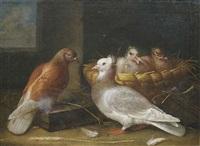ein taubenpaar mit ihrem nachwuchs, dem in einem weidenkorb ein nest bereitet wurde by johann friedrich löber