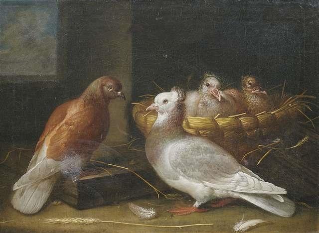 ein taubenpaar mit ihrem nachwuchs dem in einem weidenkorb ein nest bereitet wurde by johann friedrich löber